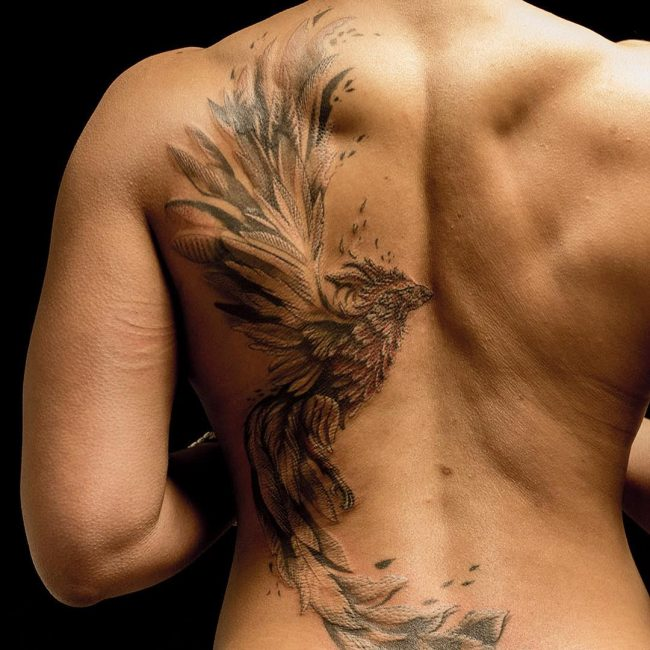 bird half back tattoo for men