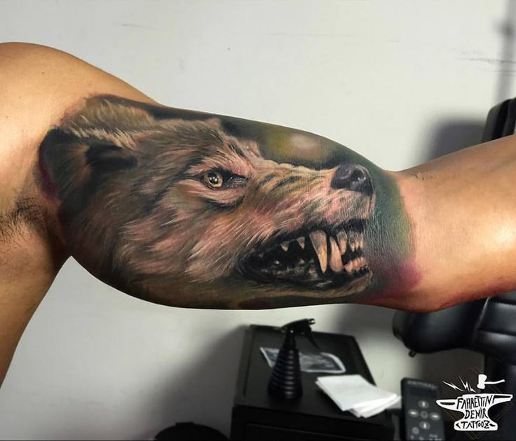 6aefd7288 ... detailed wolf face inner bicep tattoo for men ...