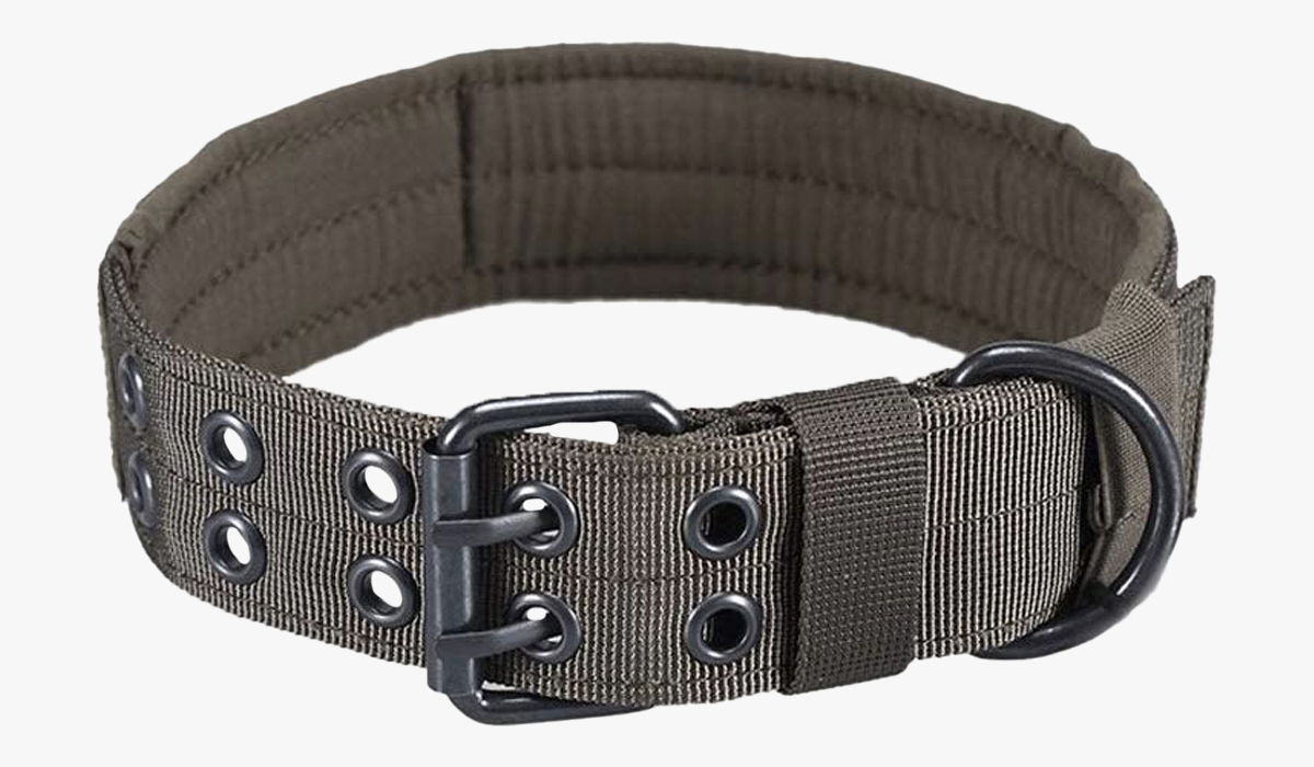 onetigris military adjustable dog collar